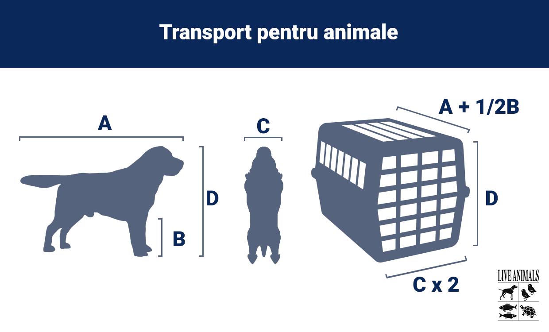 Cusca transport animale avion