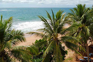 Vacante Sri Lanka